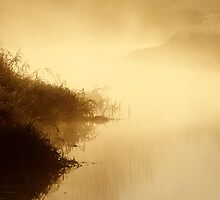 18.10.2014: October Morning at Loimijoki River II by Petri Volanen