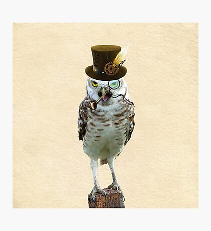 Lord of the Owls Photographic Print