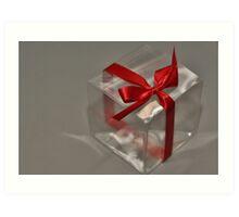 Gift for All Seasons Art Print
