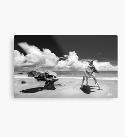 It Takes One to Know One Metal Print