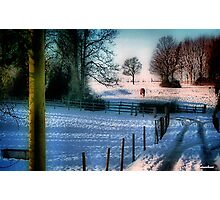 The Snow Fields Photographic Print