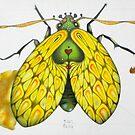 Moth  (original sold) by federico cortese
