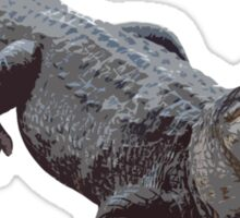 """Cool Gator"" Sticker"