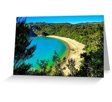 Beautiful beach at Abel Tasman National Park, New Zealand Greeting Card