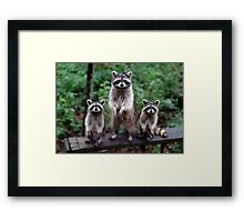 """Family Portrait"" Framed Print"