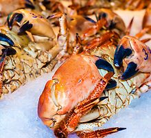 Closeup view on fresh crabs in the market by Stanciuc