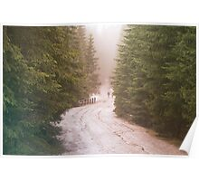 Dirt road through the coniferous forest. The wanderers on the road. Hipster colors Poster