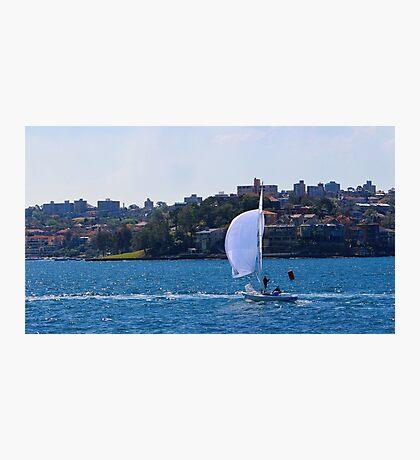 Sailing across Sydney Habour Photographic Print