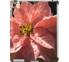 Sunny Pink Poinsettia - Vivacious Christmas Greetings iPad Case/Skin