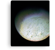 Detail of Triton Canvas Print
