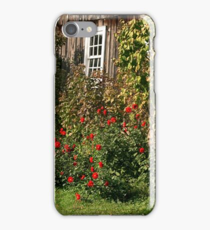 Roses Against The Old Barn iPhone Case/Skin