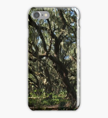 old homesite along the kissimmee river iPhone Case/Skin