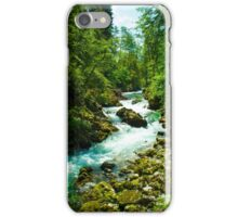 Slovenia iPhone Case/Skin