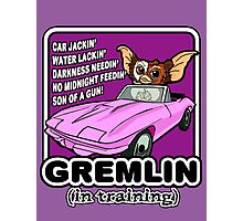 Gremlins don't follow ALL the rules Photographic Print