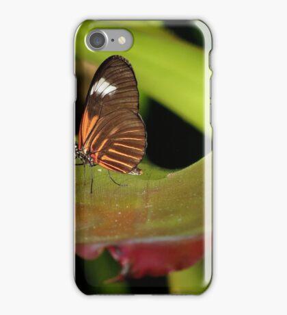 Self~Propelled Flowers ~ 2017-3 iPhone Case/Skin