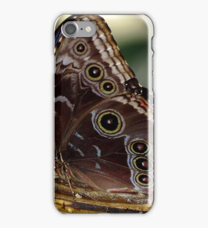 Self~Propelled Flowers ~ 2017-11 iPhone Case/Skin