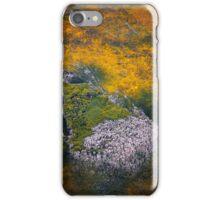 Terra Firma 13/13 iPhone Case/Skin
