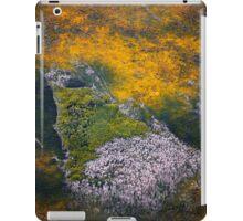 Terra Firma 13/13 iPad Case/Skin