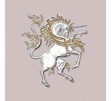 Silver and Gold Unicorn Photographic Print
