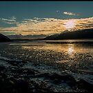Winter Sunrise by Melissa Seaback