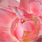 Pink Petals Pillow by relayer51