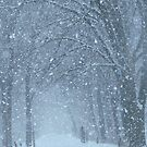 Let It Snow by lorilee