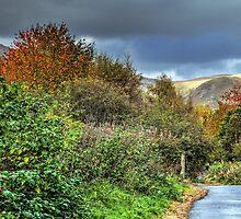 The Devon Way by Jeremy Lavender Photography