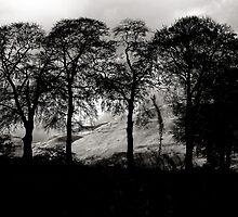 The Ochil Hills by Jeremy Lavender Photography