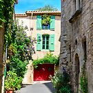 Street in historical center of Pezenas, Languedoc, France by 7horses