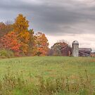 Country Barn in Autumn by KathleenRinker