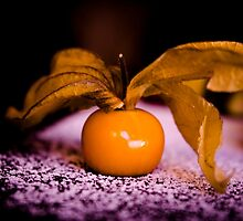 Orange cherry tomatoes on snow by GemaIbarra