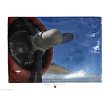 Red White & Blue Photographic Print