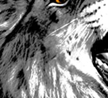 Lion illustration Sticker