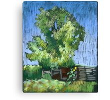 An old willow in a Russian village. Summer Canvas Print