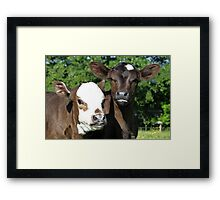 What Mischief Can We Get Up To Today? Framed Print