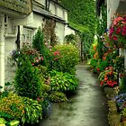 A Hawkshead Alley by Jamie  Green