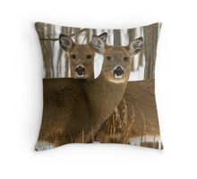 Deer in the wintry forest Throw Pillow