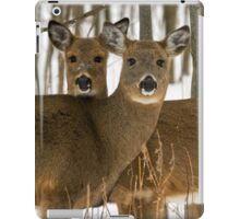 Deer in the wintry forest iPad Case/Skin