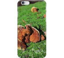 Elephants in Tall Grass iPhone Case/Skin