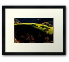 Late Afternoon Light Framed Print