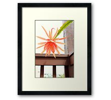 Bloomin' Cup 'N Saucer Framed Print