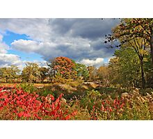 Fall Sinfonia Photographic Print