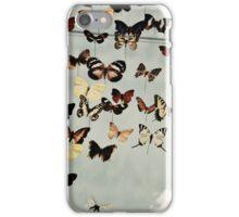 AMNH iPhone Case/Skin
