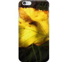 SIGN OF AUTUMN iPhone Case/Skin