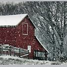 Barn Bluster... products by © Bob Hall