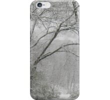 The Quiet... products iPhone Case/Skin