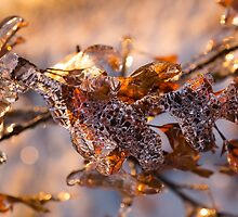 Mother Nature's Christmas Decorations – Oak Leaves Jewelry by Georgia Mizuleva