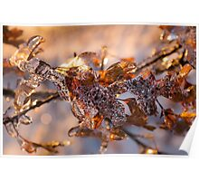 Mother Nature's Christmas Decorations – Oak Leaves Jewelry Poster