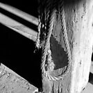 In the Barn 2 BW by marybedy