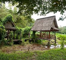 Thailand Country by GRACE COSTA